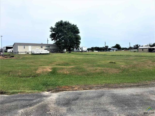 000 Waterfront Row, Quitman, TX 75783 (MLS #10098008) :: RE/MAX Impact
