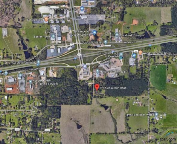 295 Kyle Wilson Road, Longview, TX 75602 (MLS #10098011) :: The Wampler Wolf Team