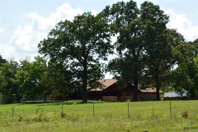 571 An County Road 431, Tennessee Colony, TX 75861 (MLS #10098742) :: The Wampler Wolf Team