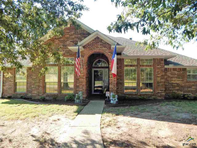 1800 Topaz Cove, Whitehouse, TX 75791 (MLS #10099277) :: RE/MAX Professionals - The Burks Team