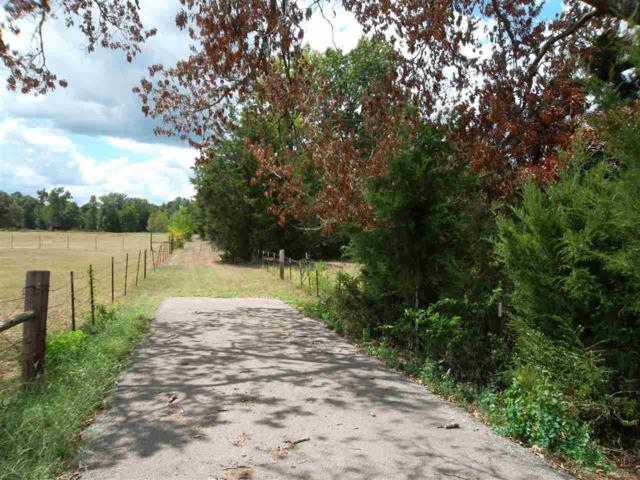 TBD State Hwy 204, Jacksonville, TX 75766 (MLS #10099361) :: RE/MAX Impact