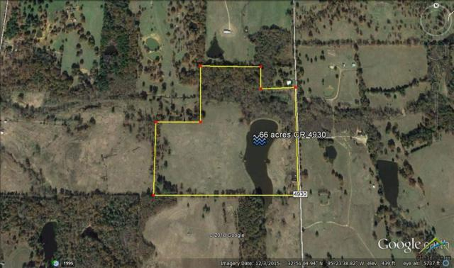 0000 Cr 4930, Quitman, TX 75783 (MLS #10099379) :: The Wampler Wolf Team