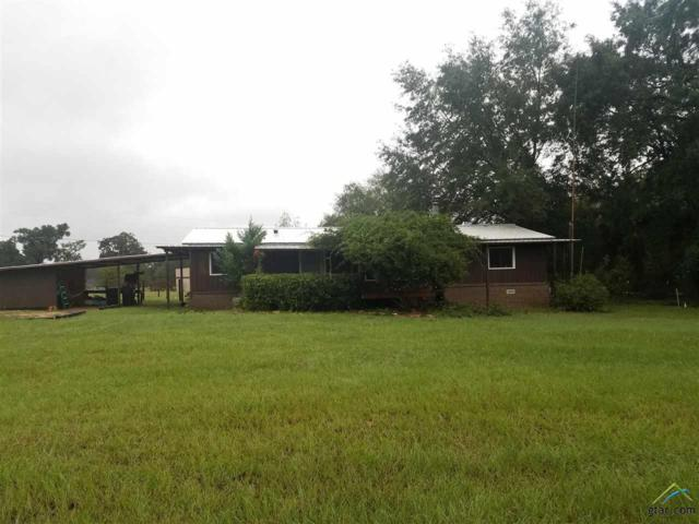 13352 Cr 1308, Whitehouse, TX 75791 (MLS #10100309) :: The Wampler Wolf Team