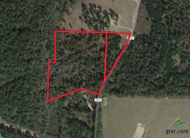 00 An County Road 4441, Neches, TX 75779 (MLS #10101111) :: RE/MAX Impact