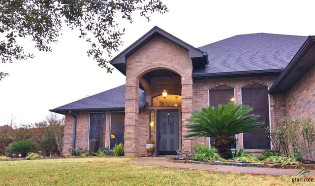 1719 Onyx Cove, Whitehouse, TX 75791 (MLS #10102602) :: RE/MAX Professionals - The Burks Team