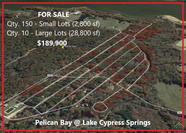 Multiple Lots Albatros Drive, Winnsboro, TX 75494 (MLS #10102761) :: RE/MAX Impact
