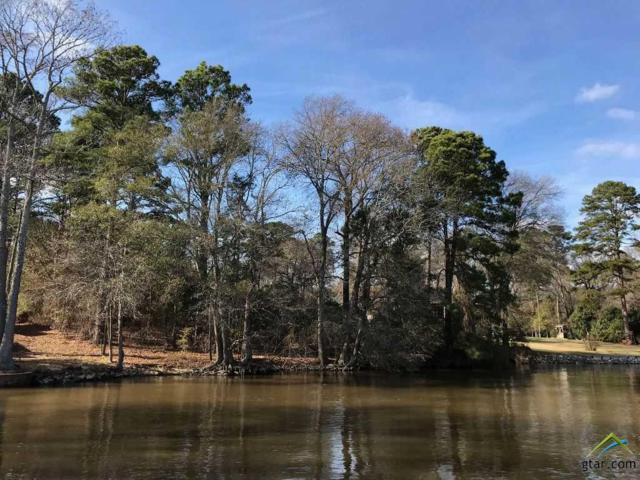 Lots 35 & 36 Neches Dr., Chandler, TX 75758 (MLS #10103628) :: RE/MAX Impact