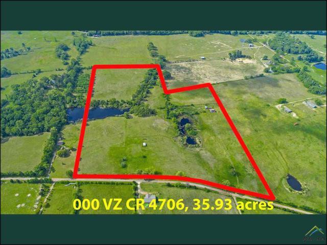35.93 Acres On Vzcr 4706, Ben Wheeler, TX 75754 (MLS #10104482) :: The Wampler Wolf Team