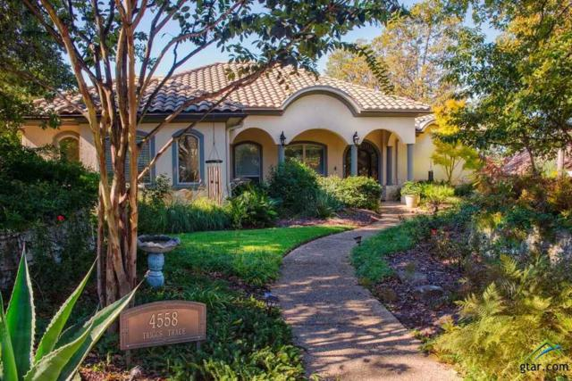 4558 Triggs Trace, Tyler, TX 75709 (MLS #10104695) :: The Wampler Wolf Team