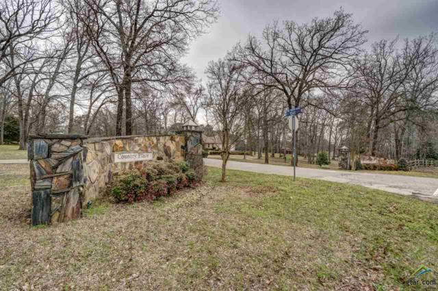 19248 Hidden Lake Dr, Tyler, TX 75703 (MLS #10105370) :: RE/MAX Professionals - The Burks Team