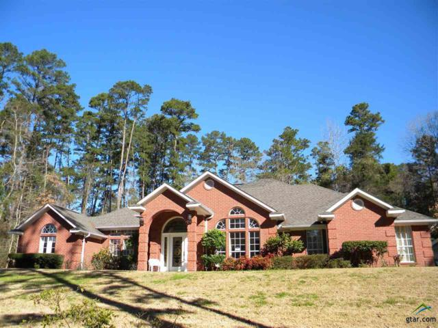 1413 E Holly Trail, Holly Lake Ranch, TX 75765 (MLS #10105434) :: The Wampler Wolf Team