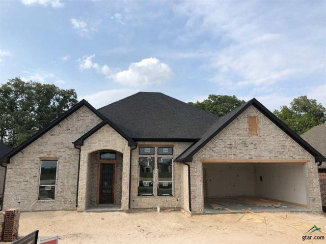 3065 Salado Creek, Tyler, TX 75703 (MLS #10106510) :: RE/MAX Professionals - The Burks Team