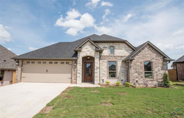 2913 Salado Creek, Tyler, TX 75703 (MLS #10106515) :: RE/MAX Professionals - The Burks Team