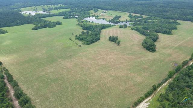 1040 Cr 3590, Winnsboro, TX 75494 (MLS #10106761) :: RE/MAX Impact