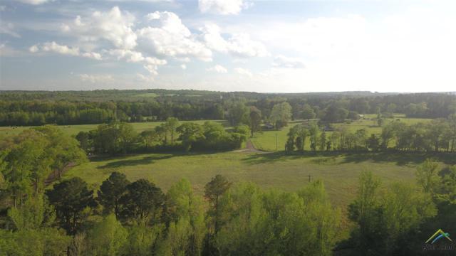TBD Cr 3157, Laneville, TX 75667 (MLS #10106886) :: RE/MAX Impact