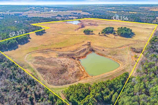 TBD County Road 356, Winona, TX 75792 (MLS #10107564) :: The Wampler Wolf Team