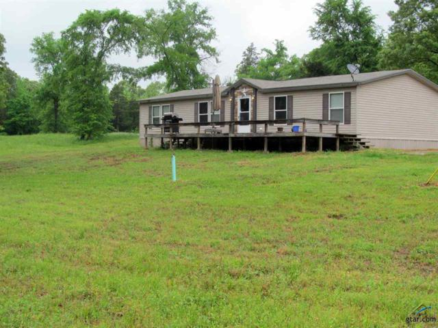 12228 S Hwy 37, Winnsboro, TX 75494 (MLS #10107591) :: The Wampler Wolf Team