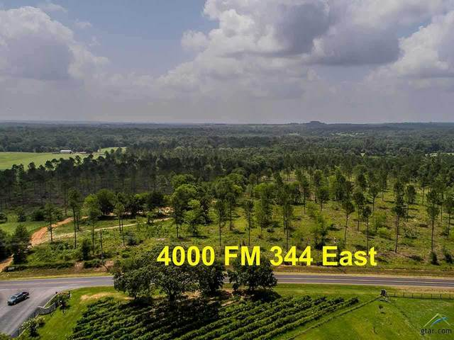 4000 E Fm 344, Tyler, TX 75703 (MLS #10108034) :: Griffin Real Estate Group
