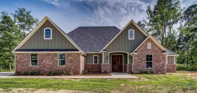22559 Lake Jackson Dr, Lindale, TX 75771 (MLS #10108129) :: RE/MAX Professionals - The Burks Team