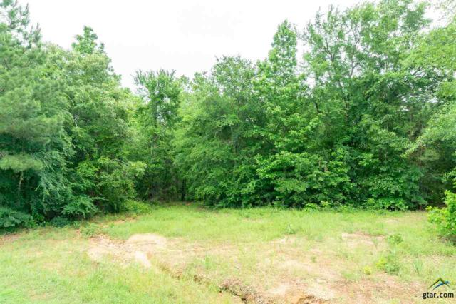 tbd Cr 4102, Lindale, TX 75771 (MLS #10108178) :: The Wampler Wolf Team