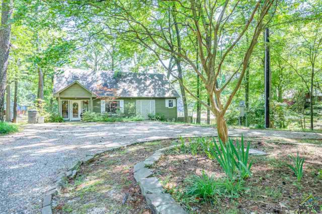 233 Trappers Trail, Mt Vernon, TX 75457 (MLS #10108646) :: RE/MAX Impact
