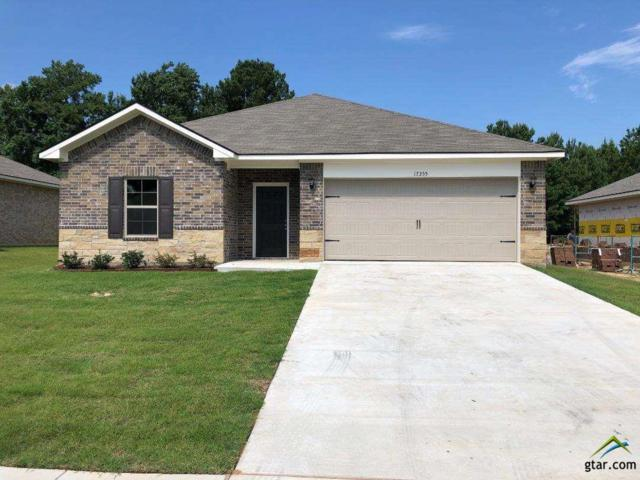 17355 Stacey Street, Lindale, TX 75771 (MLS #10110590) :: RE/MAX Impact