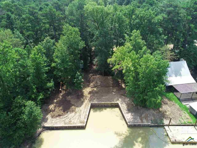 TBD Cypress Creek Drive, Mt Vernon, TX 75457 (MLS #10111233) :: RE/MAX Impact