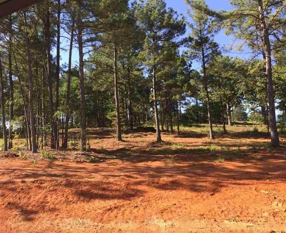 12157 Oak Grove Dr, Lindale, TX 75706 (MLS #10113335) :: Wood Real Estate Group