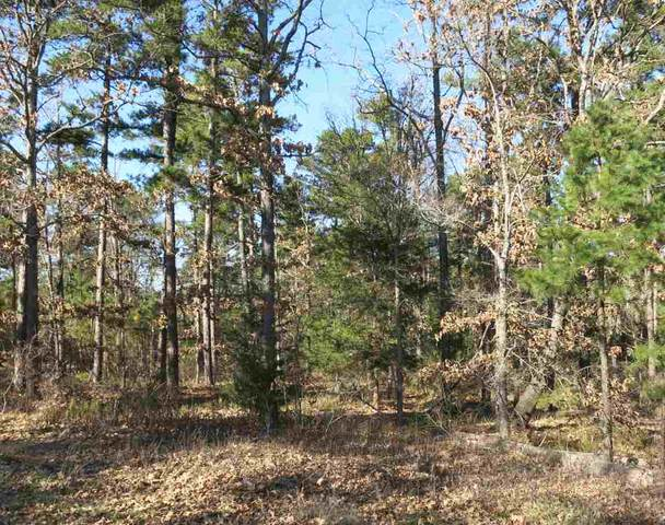 Lot 6 Lake Gladewater Dr, Gladewater, TX 75647 (MLS #10113870) :: The Edwards Team Realtors