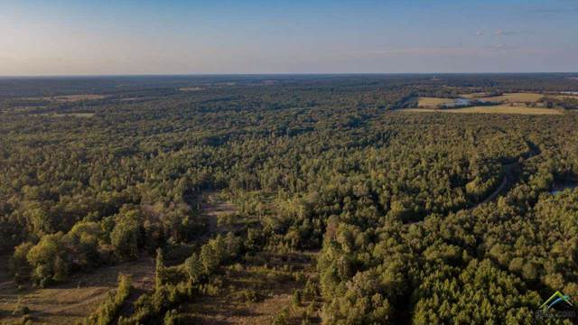 TBD Cr 435 D 305 Acres, Laneville, TX 75667 (MLS #10114534) :: The Wampler Wolf Team