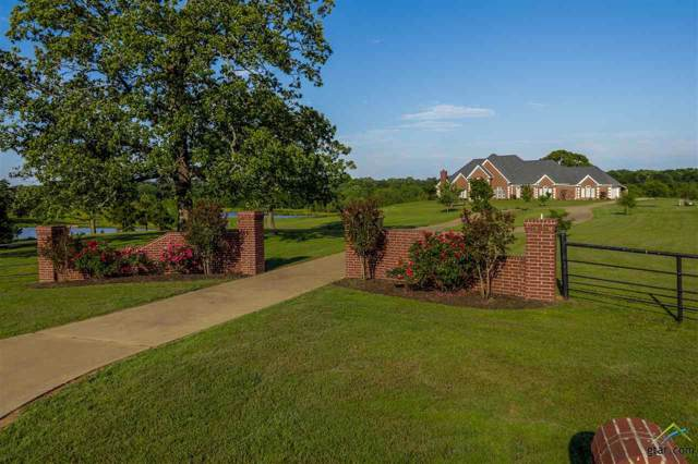 141 SE Cr 4215, Mt Vernon, TX 75457 (MLS #10114641) :: The Wampler Wolf Team