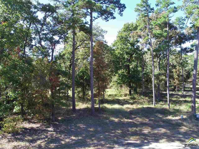 TBD Purley Farms Circle, Mt Vernon, TX 75457 (MLS #10115339) :: The Wampler Wolf Team