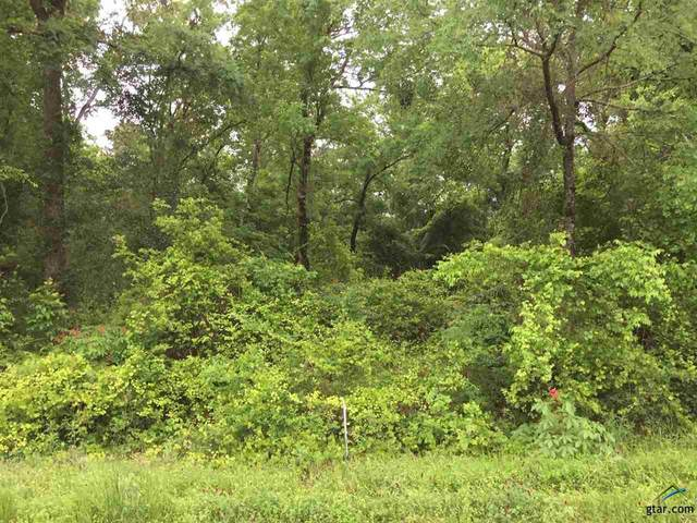 Cr 2430, Pittsburg, TX 75686 (MLS #10115656) :: Griffin Real Estate Group