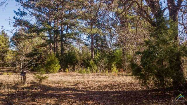 1032 Cr 4910, Troup, TX 75789 (MLS #10116811) :: The Wampler Wolf Team