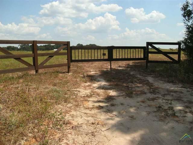 10 acres 9061 Cr 3614, Murchison, TX 75778 (MLS #10119918) :: RE/MAX Professionals - The Burks Team