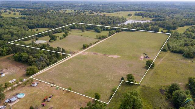 TBD Fm 1803, Murchison, TX 75778 (MLS #10119974) :: Griffin Real Estate Group