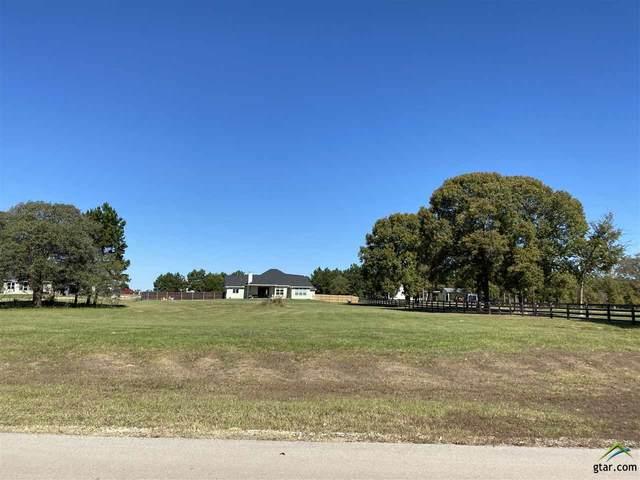 22506 Lake Jackson Dr., Lindale, TX 75771 (MLS #10122853) :: Griffin Real Estate Group