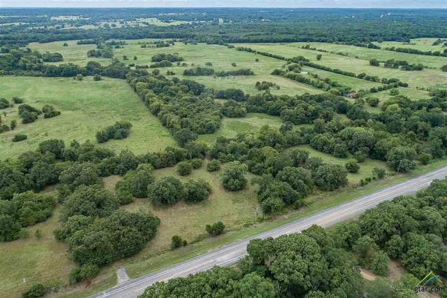 TBD Highway 19, Edgewood, TX 75117 (MLS #10124654) :: Griffin Real Estate Group