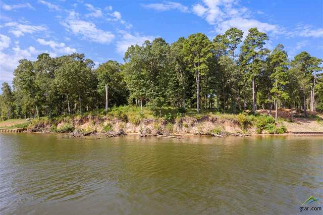 858 County Road 2416, Leesburg, TX 75451 (MLS #10124922) :: Griffin Real Estate Group