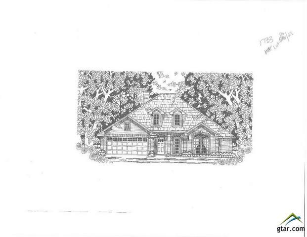 11671 Berrycreek Circle, Frankston, TX 75763 (MLS #10125536) :: Griffin Real Estate Group