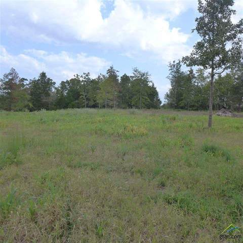 TBD Almond Rd, Big Sandy, TX 75755 (MLS #10125638) :: Griffin Real Estate Group