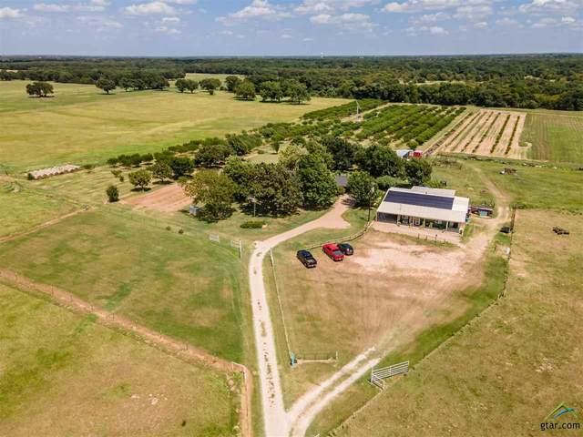 10800 Cr 4090, Scurry, TX 75158 (MLS #10125751) :: RE/MAX Professionals - The Burks Team