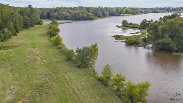 Lake Front Tbd Gatlinburg Road, Bullard, TX 75757 (MLS #10126758) :: Griffin Real Estate Group