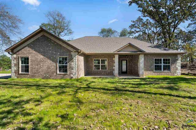 486 County Road 4231, Mt Pleasant, TX 75455 (MLS #10126777) :: Griffin Real Estate Group