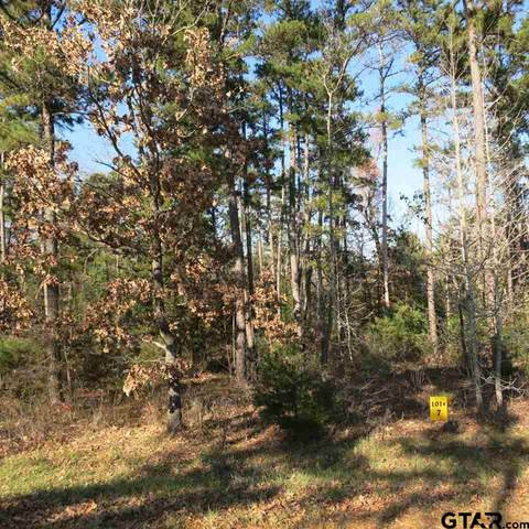 Lot 7 Lake Gladewater Dr, Gladewater, TX 75647 (MLS #10127234) :: The Edwards Team Realtors