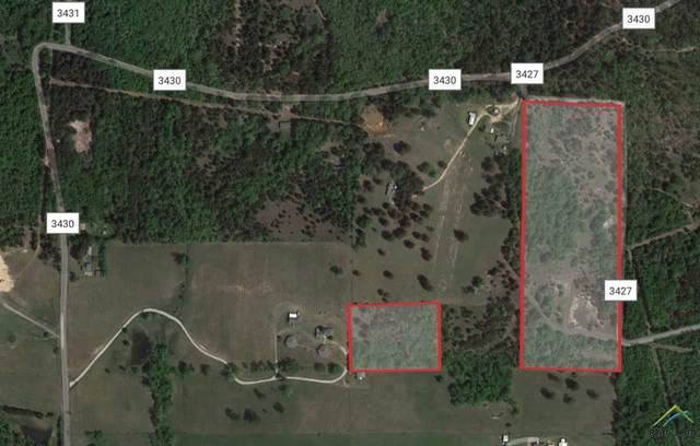Cr 3427, Hawkins, TX 75765 (MLS #10127780) :: Griffin Real Estate Group