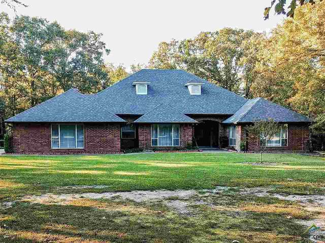 564 County Road 3353, Cookville, TX 75558 (MLS #10127848) :: The Wampler Wolf Team