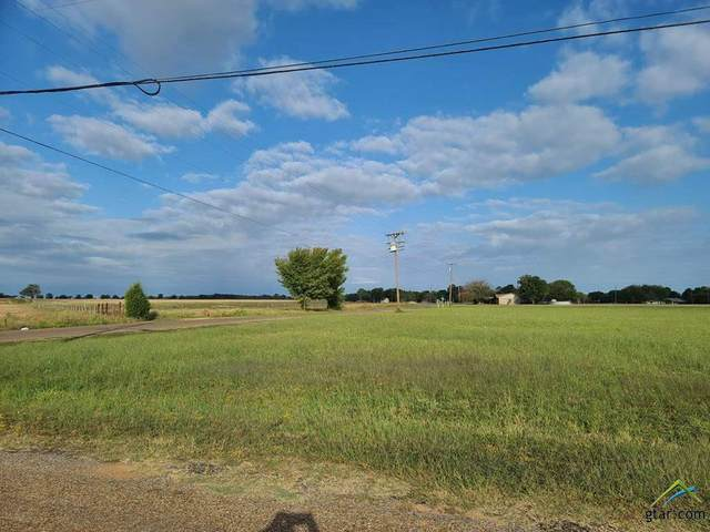 0 Loving Ranch Road, Trinidad, TX 75163 (MLS #10127985) :: RE/MAX Professionals - The Burks Team