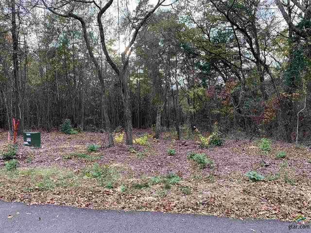 Tract 7A Old Tyler Rd., Whitehouse, TX 75791 (MLS #10128956) :: The Wampler Wolf Team