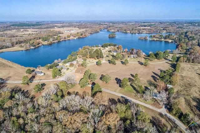7302 E Lake Drive, Murchison, TX 75778 (MLS #10129470) :: Griffin Real Estate Group